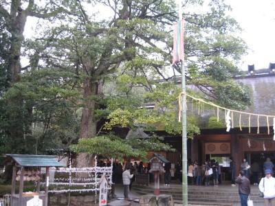 amanohashidate-1401-0012